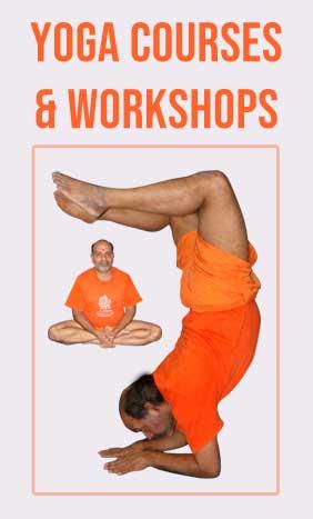 Yoga Courses & Workshops